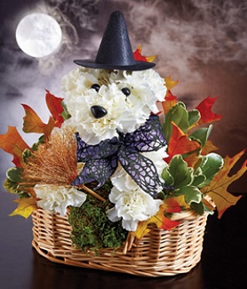 S-pooky Dog Arrangement  in Guelph ON, Patti's Flower Boutique