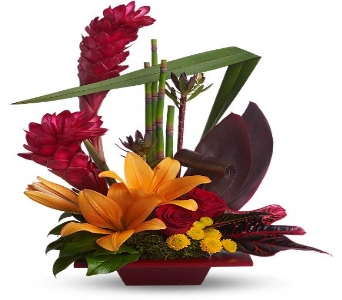 Tropical Bliss in Largo FL, Rose Garden Flowers & Gifts, Inc