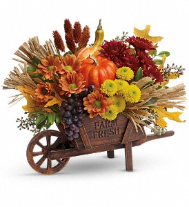 Teleflora's Rustic Charm Bouquet in Hopewell Junction NY, Sabellico Greenhouses & Florist, Inc.