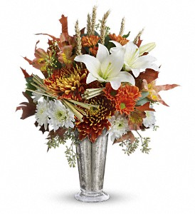 Teleflora's Harvest Splendor Bouquet in Jamesburg NJ, Sweet William & Thyme