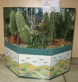 Extra Large Cactus Garden in Guelph ON, Patti's Flower Boutique
