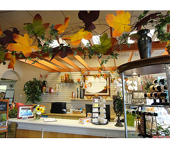 Tour the Shop in Tampa FL, Buds Blooms & Beyond