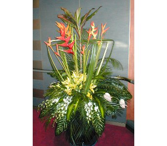 Tropical in Norristown PA, Plaza Flowers