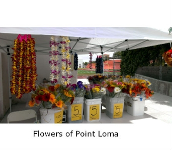 Fundraiser in San Diego CA, Flowers Of Point Loma