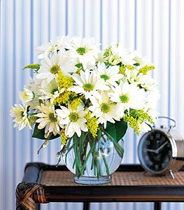 WHITE DAISY WHISPER BOUQUET in Vienna VA, Vienna Florist & Gifts