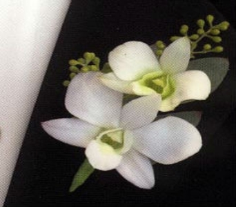 White Dendro Orchid Boutonnier in Somerset NJ, Flower Station