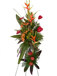 Tropic Thunder Spray in Lake Charles LA, A Daisy A Day Flowers & Gifts, Inc.