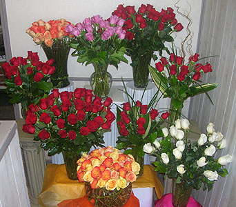 365 Roses to say I Love You Every Day! in Dallas TX, Petals & Stems Florist