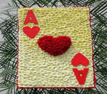 Ace of Heart in Brooklyn NY, David Shannon Florist & Nursery