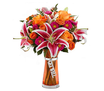 Get Well Wishes in Baltimore MD, Raimondi's Flowers & Fruit Baskets