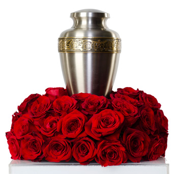 Splendor - Rose Cremation Flowers in Dallas TX, Dr Delphinium Designs & Events