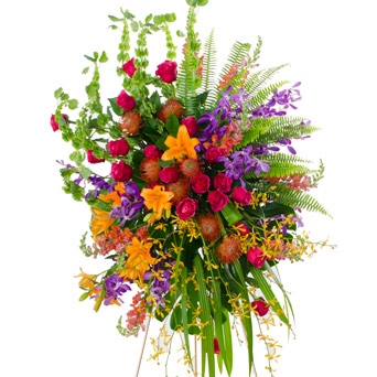 Grace - Bright Spray Flowers in Dallas TX, Dr Delphinium Designs & Events
