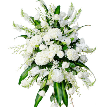 Grace - White Flower Spray in Dallas TX, Dr Delphinium Designs & Events
