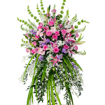 Grace - Soft Flower Spray in Dallas TX, Dr Delphinium Designs & Events