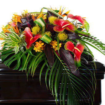 Vibrance - Full/Half Casket Flowers in Dallas TX, Dr Delphinium Designs & Events