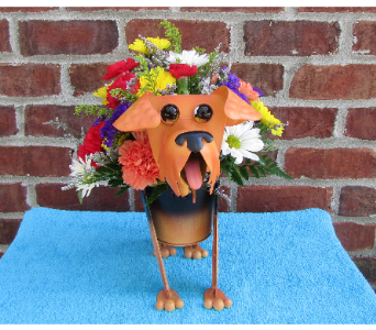 MINIATURE AIREDALE-for local delivery  in Circleville OH, Wagner's Flowers