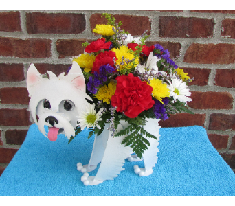 MINIATURE WESTIE-local delivery only in Circleville OH, Wagner's Flowers