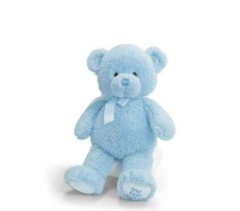 Baby Gund Bear- Lg Blue in Lawrence KS, Owens Flower Shop Inc.