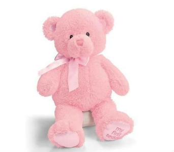 Baby Gund Bear- Lg Pink in Lawrence KS, Owens Flower Shop Inc.