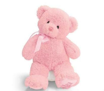 Baby Gund Bear- Sm Pink in Lawrence KS, Owens Flower Shop Inc.