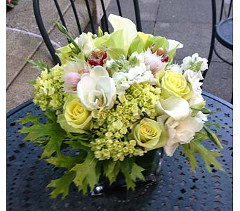All Occasion Bouquet in Bellevue WA, CITY FLOWERS, INC.
