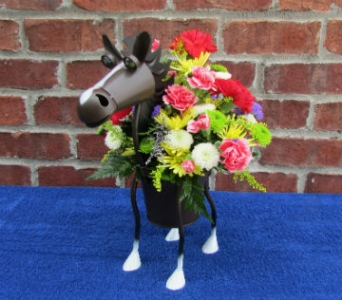 MINIATURE HORSE-for local delivery only in Circleville OH, Wagner's Flowers