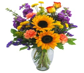 Sunflowers and Sunshine in Fond Du Lac WI, Haentze Floral Co
