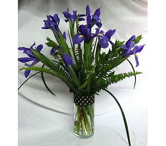 Purple Iris in Creedmoor NC, Gil-Man Florist Inc.