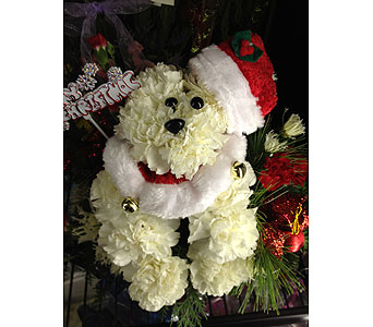 Doggone Adorable Santa Puppy in Johnstown PA, B & B Floral