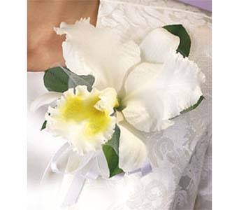White Cattleya Corsage in Brooklyn NY, Enchanted Florist
