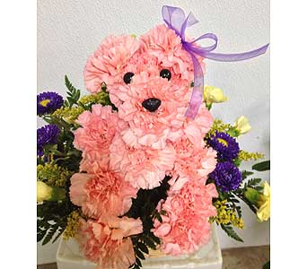 Doggone Adorable Pink Puppy in Johnstown PA, B & B Floral