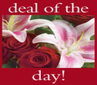 Deal of the Day in Tuscaloosa AL, Stephanie's Flowers, Inc.