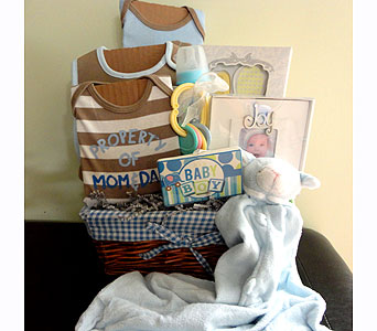 Welcome Baby Boy Basket in Silvermill Plaza FL, Buds, Blooms & Beyond