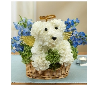 All Dogs Go To Heaven in Bradenton FL, Ms. Scarlett's Flowers & Gifts