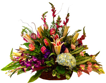 Joanne in Smithtown NY, James Cress Florist
