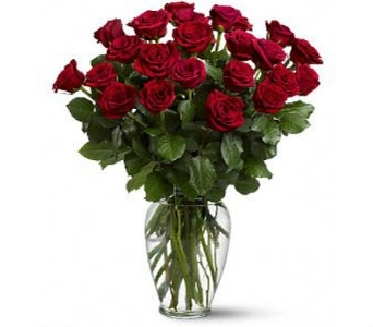 Two Dozen Roses Special in Little Rock AR, Frances Flower Shop