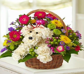 a-DOG-able� in a Basket in Poplar Bluff MO, Rob's Flowers & Gifts