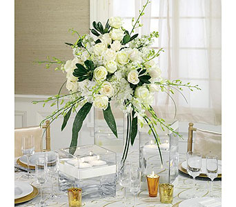 White Wedding 8 in Albuquerque NM, Silver Springs Floral & Gift