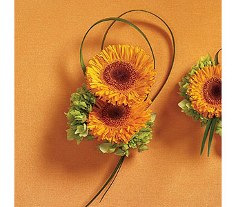 Orange Wedding 18 in Albuquerque NM, Silver Springs Floral & Gift