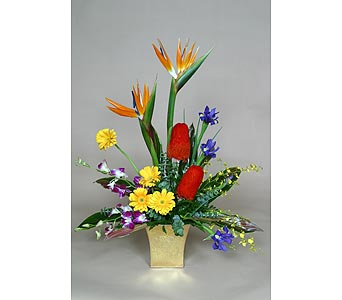Rare Bird Tropical in Aventura FL, Miami Gardens Florist