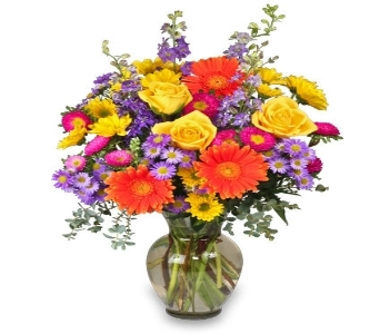 Enjoy the Day Bouquet  in Princeton, Plainsboro, & Trenton NJ, Monday Morning Flower and Balloon Co.