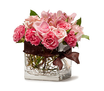 Blushing Pink in Raritan NJ, Angelone's Florist - 800-723-5078