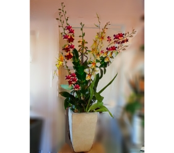 Tall and Handsome in Orinda CA, Misaghi Design Orinda Florist