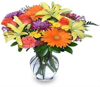 The Patton in Princeton, Plainsboro, & Trenton NJ, Monday Morning Flower and Balloon Co.
