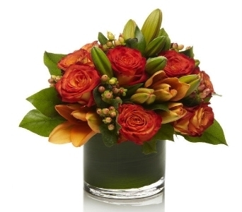 The Dickinson  in Princeton, Plainsboro, & Trenton NJ, Monday Morning Flower and Balloon Co.