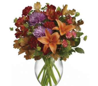 Fall Brights Bouquet in Norristown PA, Plaza Flowers