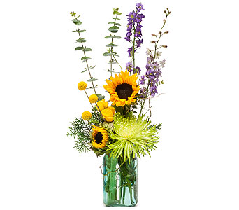 Sunflower N Blue in Raritan NJ, Angelone's Florist - 800-723-5078