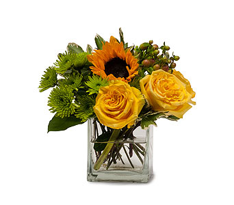Sunny Limeade in Sault Ste Marie MI, CO-ED Flowers & Gifts Inc.