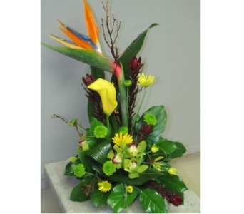Tropical Remembrance in Traverse City MI, Teboe Florist