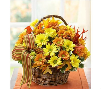 Fall Daisy Basket in Watertown CT, Agnew Florist